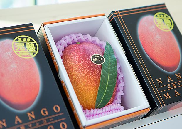 新鮮なフルーツ、南郷特産品の通販を開始しました!