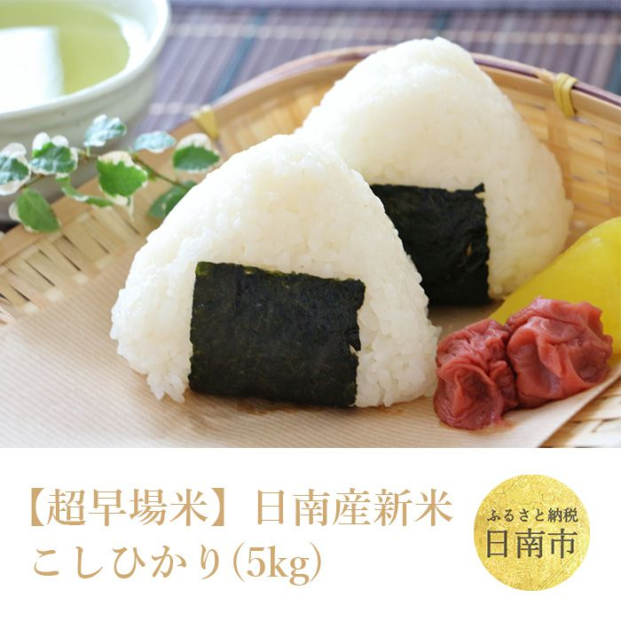 【超早場米】日南産新米こしひかり(5㎏)