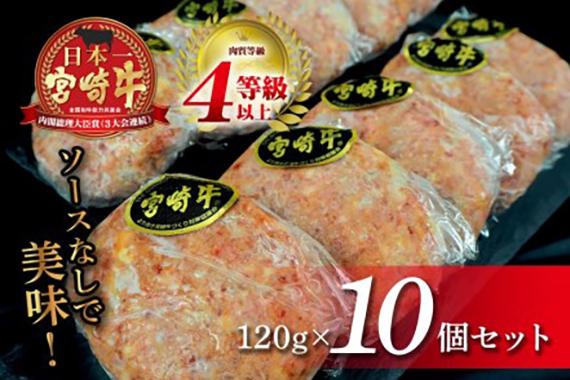 安楽畜産 宮崎牛プレミアハンバーグ10個セット